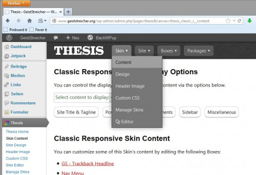 Thesis - Skin Content